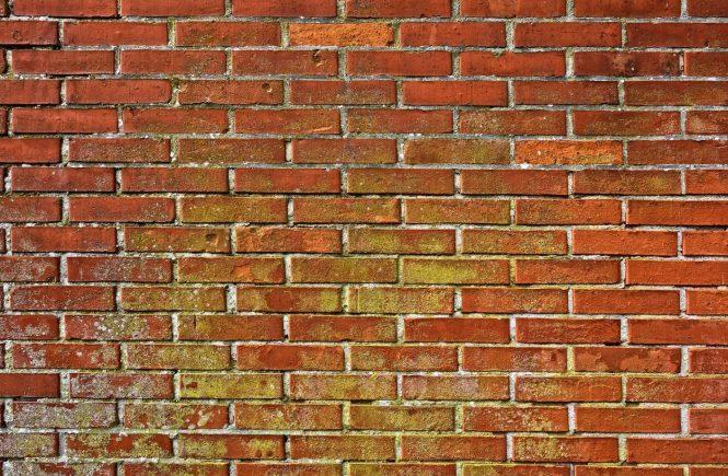 Rimedi per eliminare la muffa dai muri