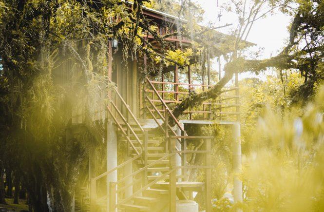 Consigli per la costruzione di case sull'albero