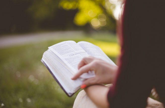 Rapporto Ocse-Pisa 1 studente su 20 comprende un testo